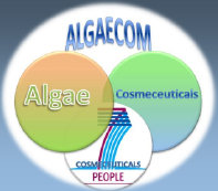algaecom_site014007.jpg